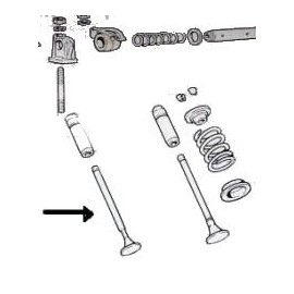 Exhaust valve<br>600 633 cm3 ( -->1960)