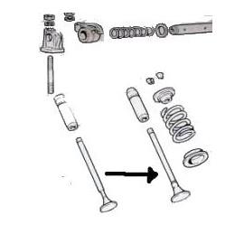 Intake valve<br>600D 767cm3 (1961 --> )