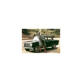Silencer (back) - 1300/1500 Sedan