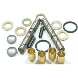Steering knuckle repair kit - Fiat 500 all