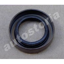 Oil seal ring - 850